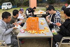 みかん狩り|岸和田採光学園|光生会